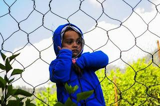 Kesalahan Orang Tua Dalam Mendidik Anak