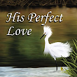 His Perfect Love - Sharon K. Connell