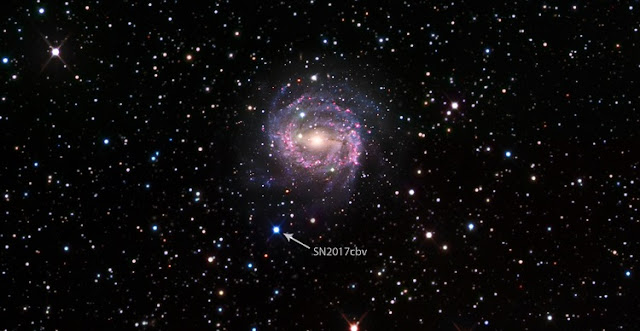 "Bright blue dot: Supernovae such as SN 2017cbv appear as ""stars that weren't there before,"" which is why multiple images taken over time are necessary to reveal their true identity. SN 2017cbv lies in the outskirts of a spiral galaxy called NGC 5643 that lies about 55 million light-years away and has about the same diameter as the Milky Way (~100,000 light-years). Data are from the Las Cumbres Observatory Global Supernova Project and the Carnegie-Irvine Galaxy Survey. (Credit: B.J. Fulton/Caltech)"