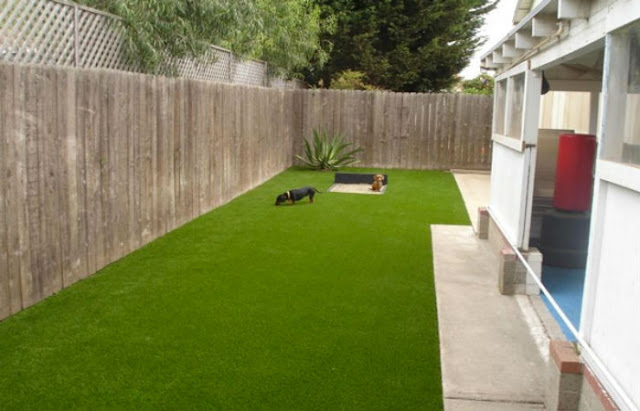 artificial turf for pets