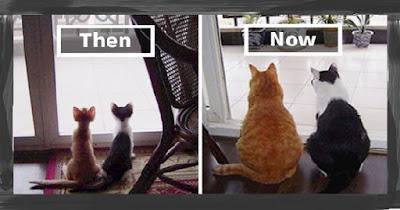 กาลเวลาทำให้หลายอย่างเปลี่ยนไป แต่เรา! ยังคง! เหมือนเดิม