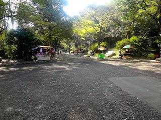 Parque das Hortênsias