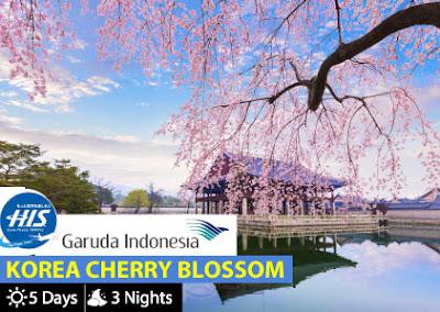 Cherry blossom trip
