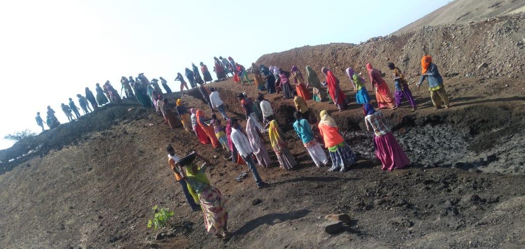 Jhabua News- मनरेगा के अंतर्गत 64 हजार 431 श्रमिकों को रोजगार उपलब्ध