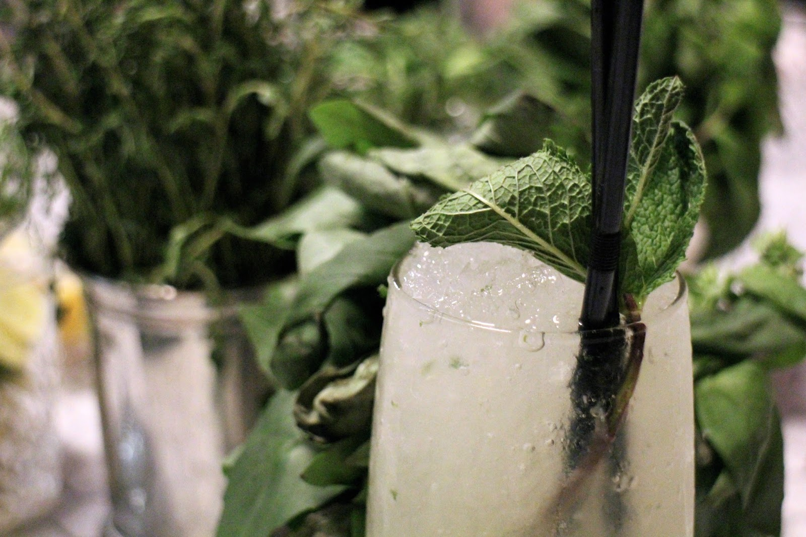 Cocktail close up, greenery and herbs