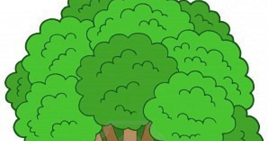 Imagenes De Un Arbol Animado: Los Amigos De Don Gorilon: Los árboles Que Hablaban