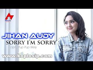 Jihan Audy - Sorry Im Sorry