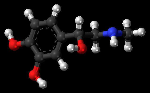 17-hydroksyprogesteron - dlaczego jest to jeden z najważniejszych hormonów dla naszego zdrowia?