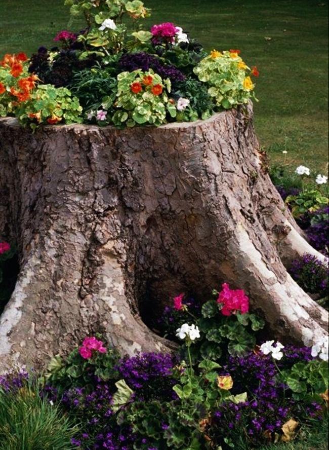 Ment tlet kre ci jrahasznos t s fat rzs vir g gy s - Decorar el jardin con poco dinero ...