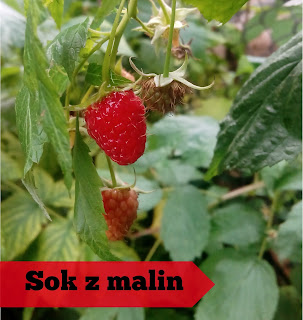 http://mamadoszescianu.blogspot.com/2016/11/naturalny-sposob-na-przeziebienie-sok-z.html