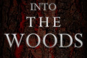 Gaming Events 2019 - OUT NOW: Into the Woods (Hic Dragones, 2017) - infogaming7.blogspot.com
