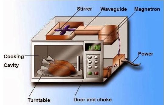 Dampak Memasak Makanan Menggunakan Microwave