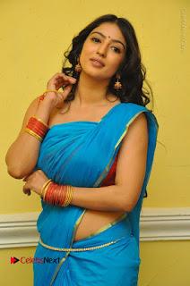 Telugu Actress Vaibhavi Stills in Blue Saree at Www.Meena Bazaar Movie Opening  0043.JPG