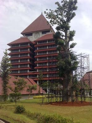 Belajar di Luar Negeri Melalui Universitas Indonesia