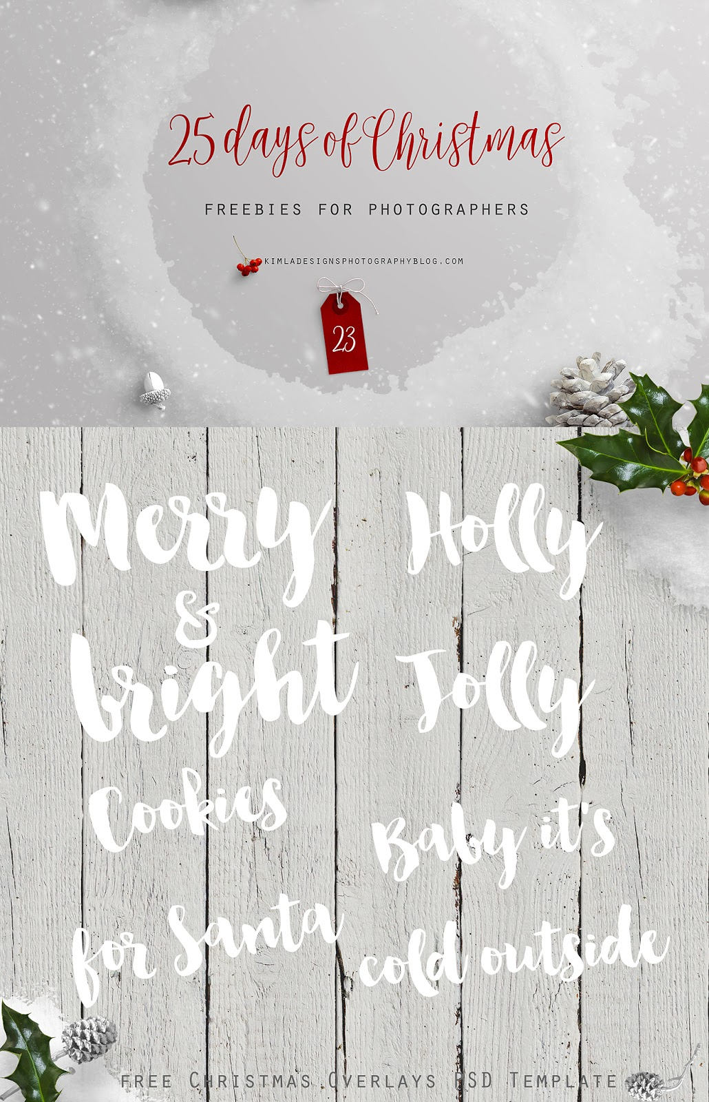 25 Days of Christmas Freebies for Photographers Day 23rd