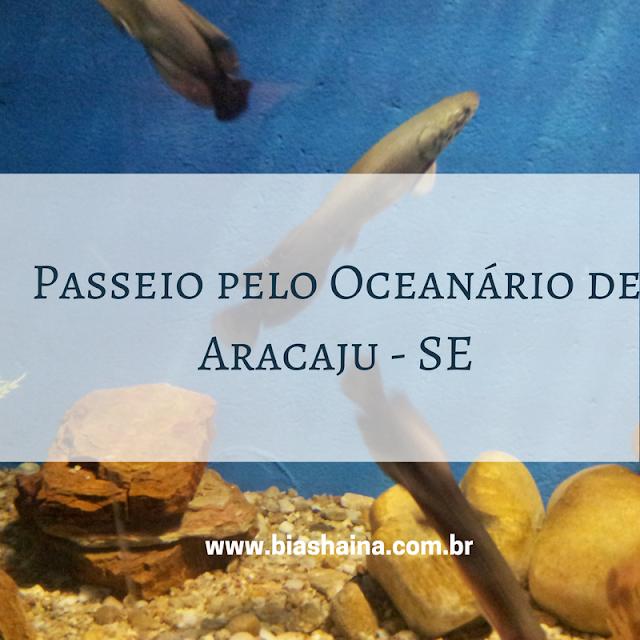 Passeio pelo Oceanário de Aracaju