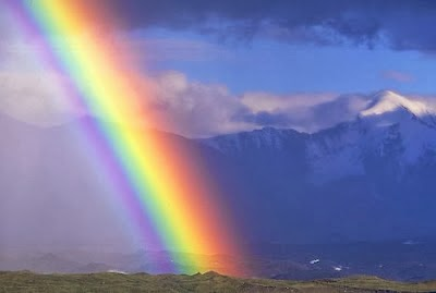For Fum And Interesting Articles Feafum Top 9 Rare Rainbow Types In The World