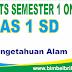 Soal UTS IPA Online Kelas 1 ( Satu ) SD Semester 1 (Ganjil) - Langsung Ada Nilainya