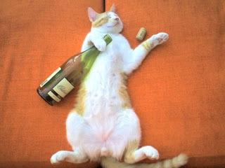 beaux-vin blog actualité vin chat  cave