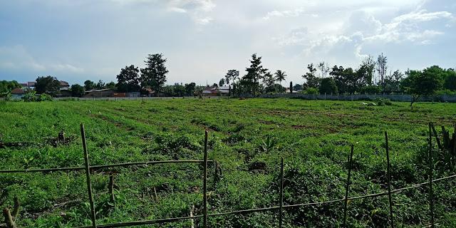 Lahan strategis di samping tol Medan - Tanjung Morawa, tepatnya di Jl. Rasmi, sebesar 11964,75 m2.  Sangat cocok untuk lokasi perumahan.  Dekat dengan jalan tol Belmera  Dekat ke Bandara Kuala Namu  Dekat dengan pusat bisnis  Dekat dengan Wisata Bunga Madirsan