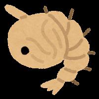 蚊の一生のイラスト(さなぎ)