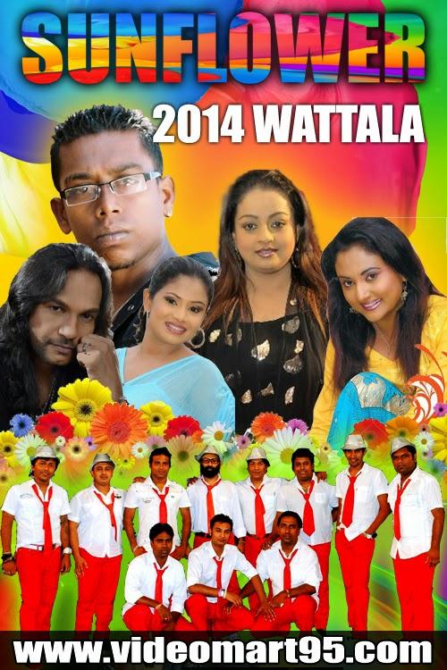 SUNFLOWER LIVE IN WATTALA 2014