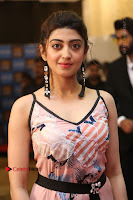 Actress Pranitha Subhash Pos in Short Dress at SIIMA Short Film Awards 2017 .COM 0125.JPG