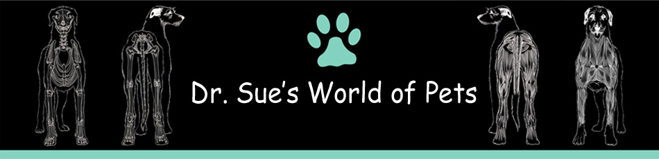Dr. Sue's World of Pets