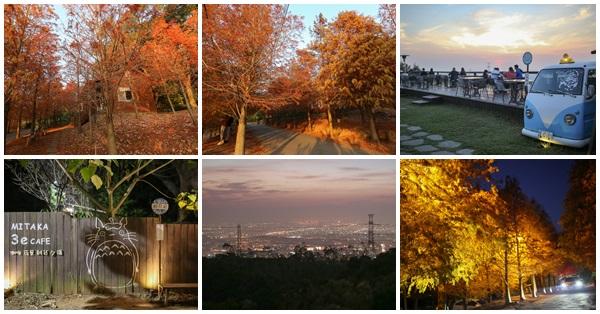 《台中.沙鹿》MITAKA 3e CAFE-咖啡、夜景、雜貨、夕陽,還有上百棵的落羽松