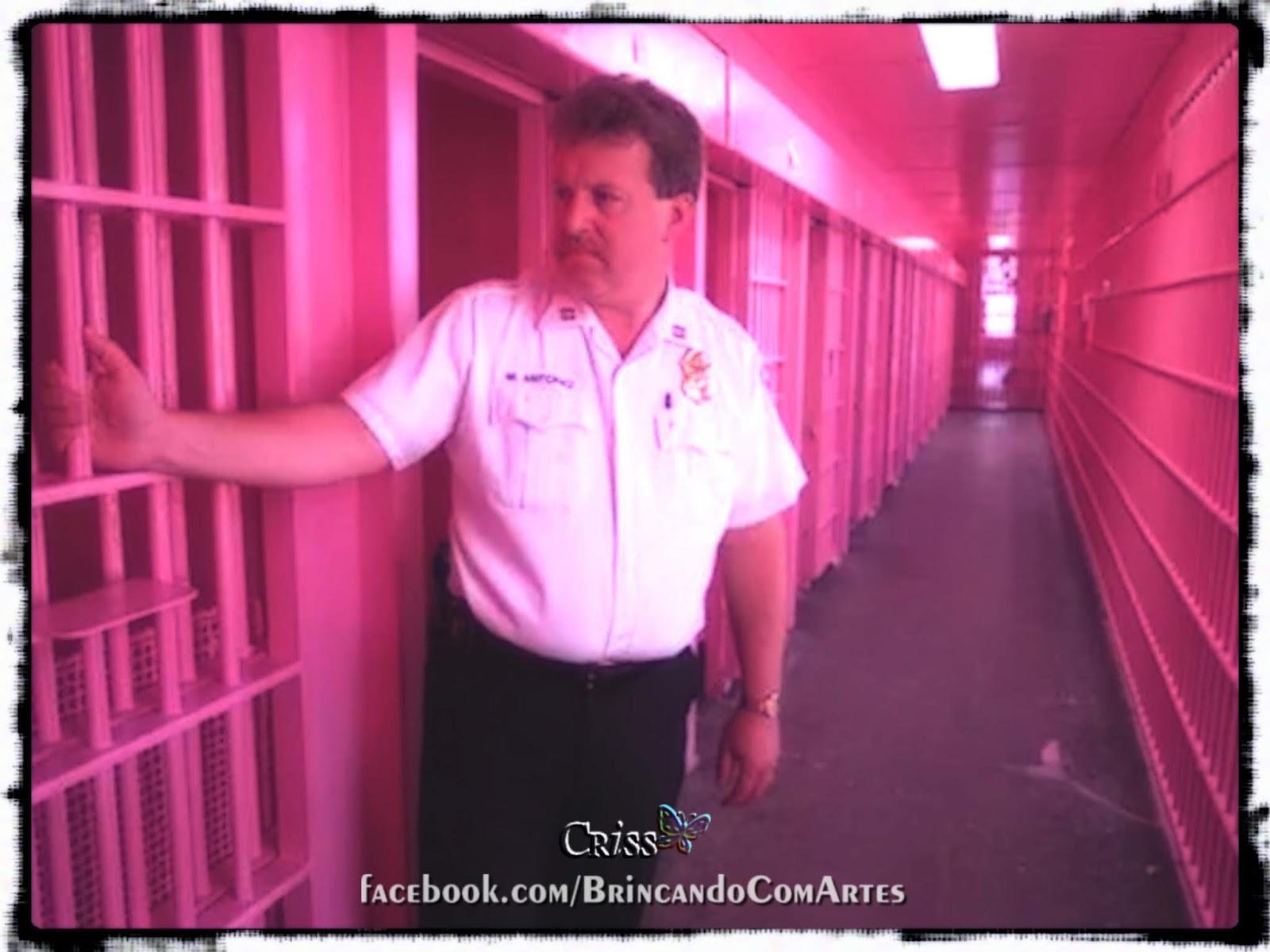 Rosa Baker-Miller utilizada em algumas cadeias norte-americanas para reduzir agressividade