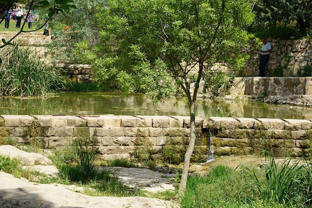 פארק אקווה -בלה