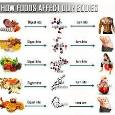 Gymers Diet