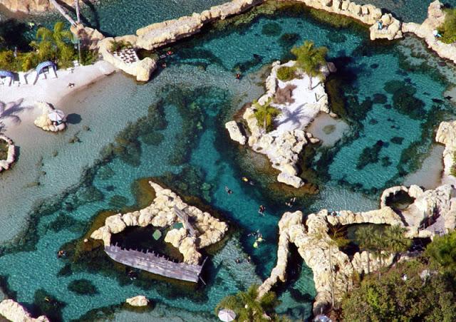 Ver más detalles sobre Discovery Cove en Orlando