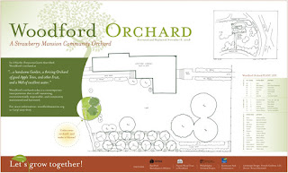 An image of the Woodford Orchard design plans