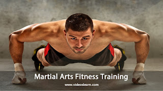 Martial Arts Fitness Training