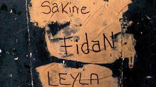 Γκρίζοι Λύκοι οι εκτελεστές που επιλέγει η ΜΙΤ, αναφέρει η Γαλλίδα δημοσιογράφος Λορ Μαρσάν