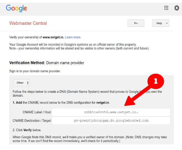Domain Verification in Google Webmaster center