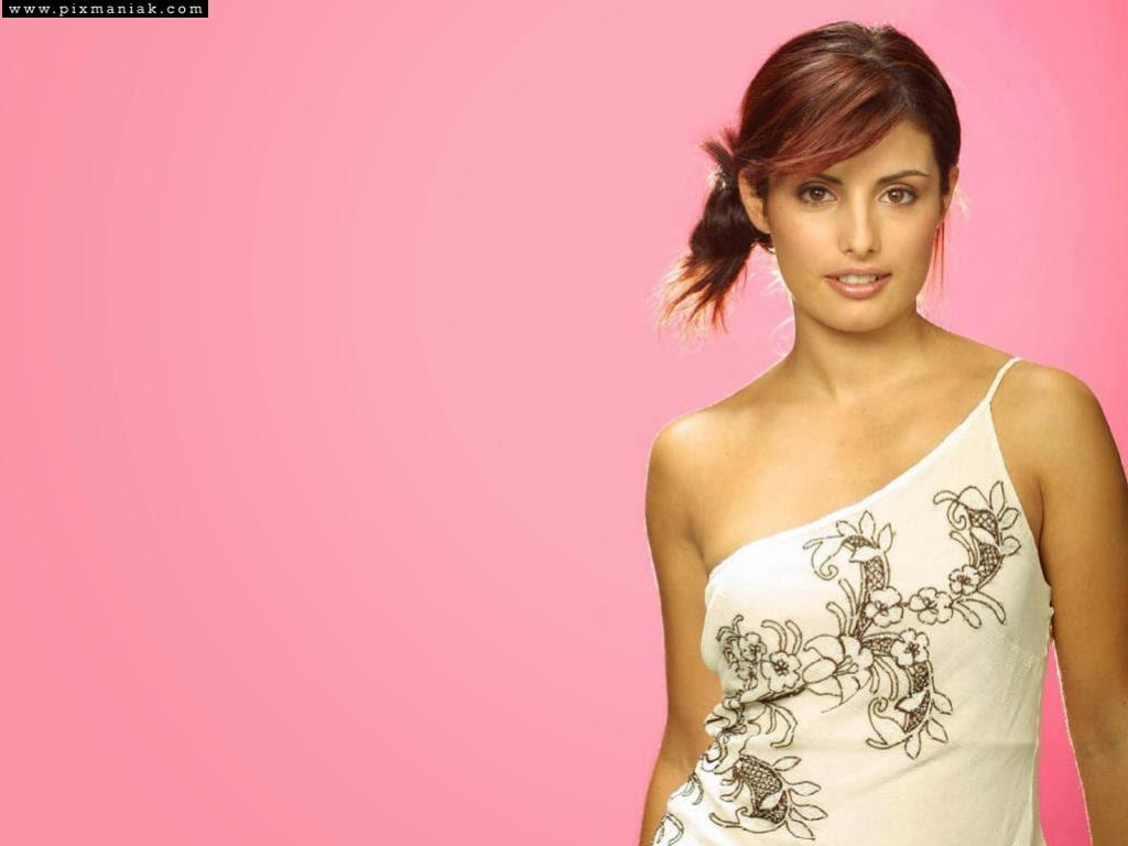 Ada Nicodemou is A Greek Cypriot Born Australian Actress HD Wallpapers