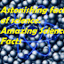 Amazing Facts of Science