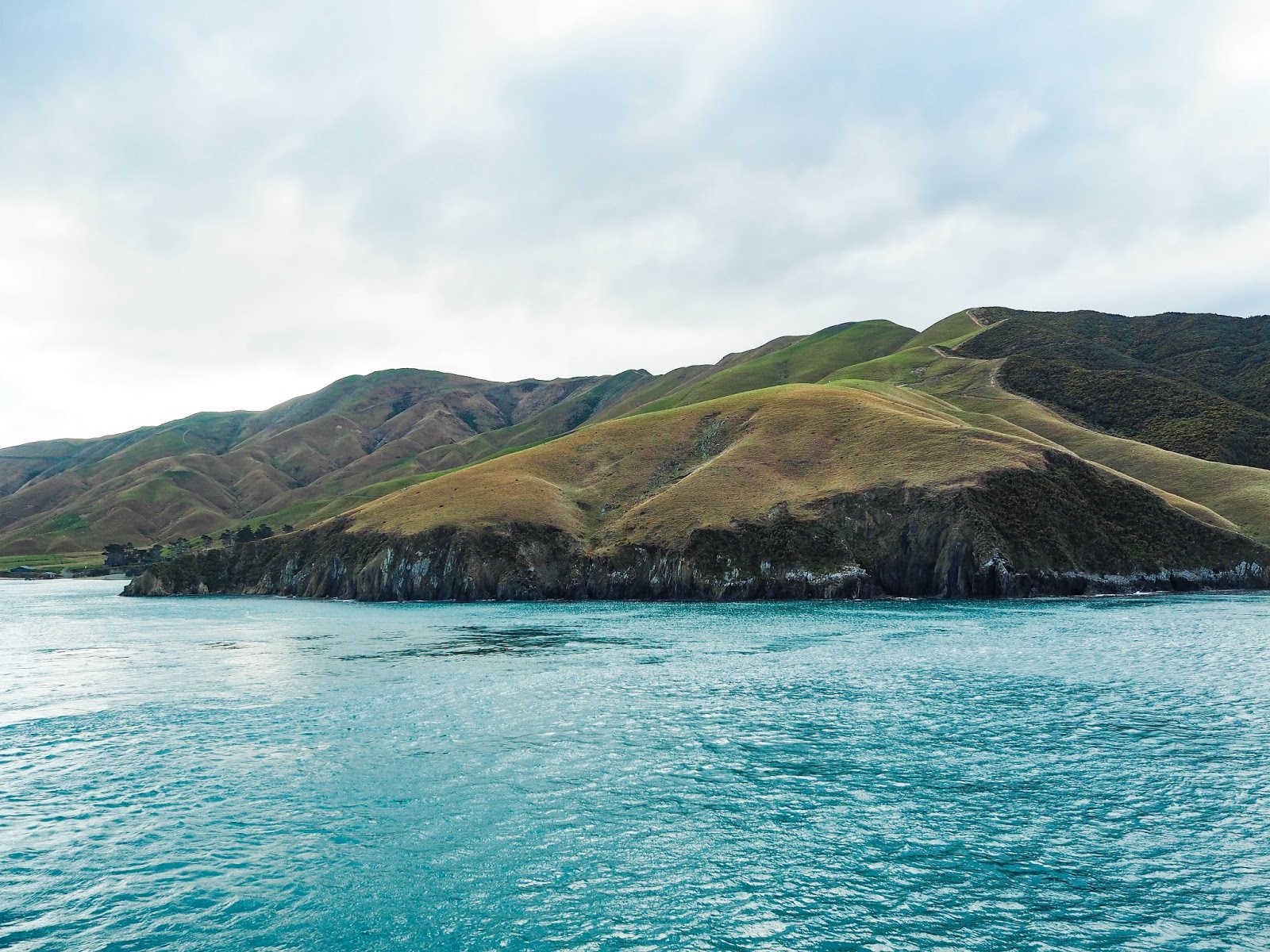 View of Marlborough Sounds from Cook Strait ferry, New Zealand