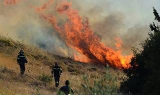 Μεγάλη η πυρκαγιά στο Κάλφα Αχαϊας