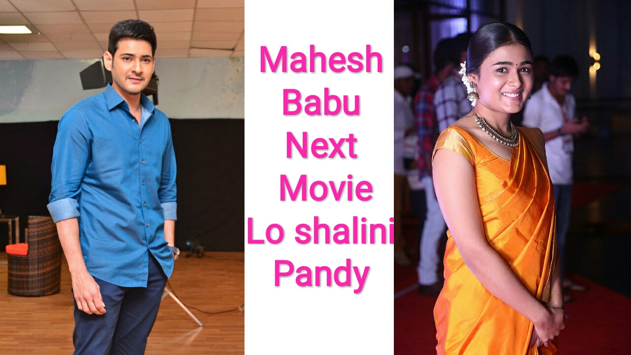 Mahesh Babu next movie
