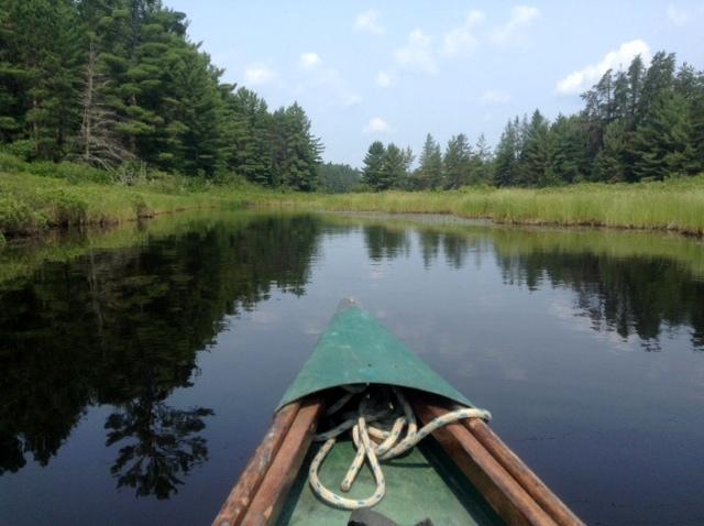 Bonnechere River in Algonquin Park