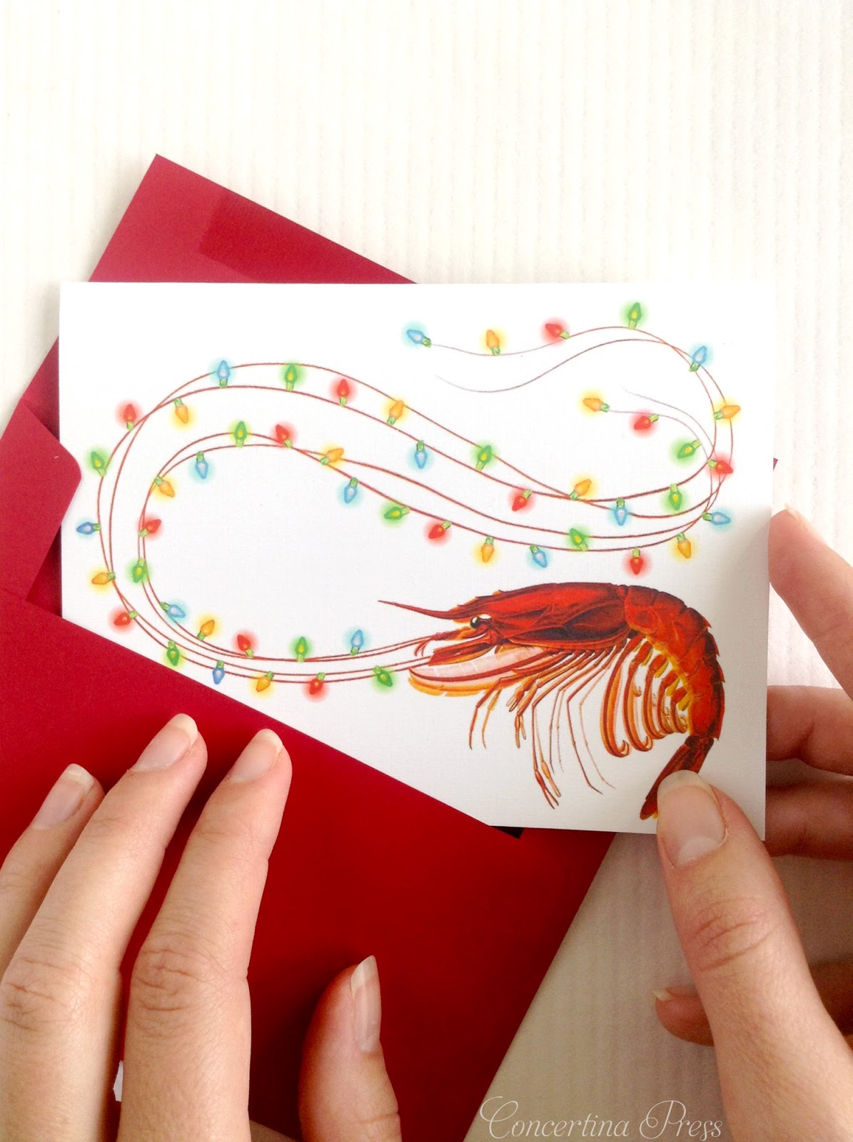 Shrimp Holiday Cards from Concertina Press made in Florida