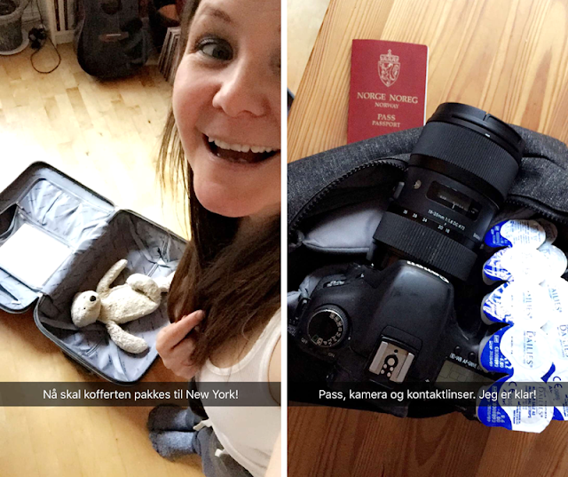 Veganreise New York Veganmisjonen Snapchat Janesmat