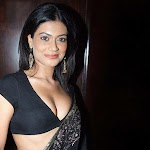 Payal Rohatgi in Black Saree Spicy Pics