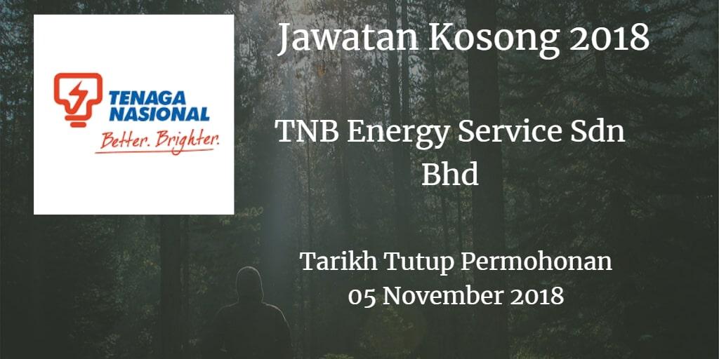 Jawatan Kosong TNB Energy Service Sdn Bhd 05 November 2018