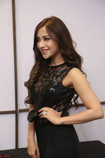 Angela Krislinzki in Transparent Black Gown at Rogue Movie Teaser Launch 1st March 2017 061.JPG