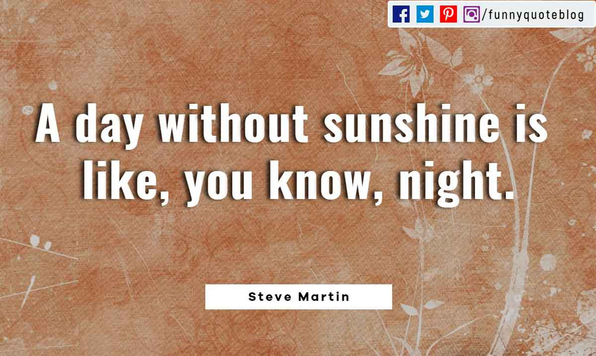 A day without sunshine is like, you know, night. ― Steve Martin Quote