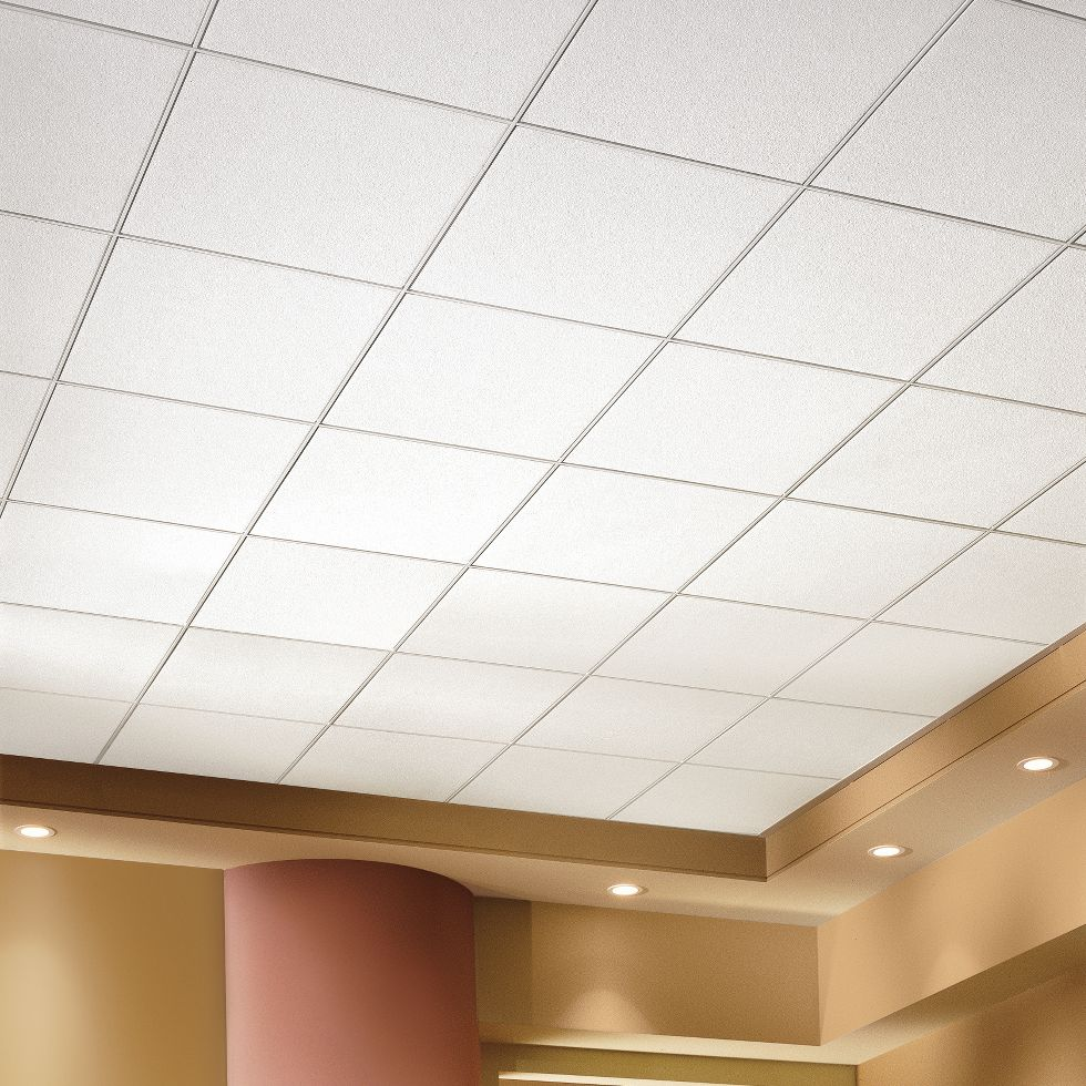 Ceiling tiles by us gallery tile flooring design ideas ceiling tiles market expected to cross over us50 bn by 2024 asia ceiling tiles are essentially doublecrazyfo Images